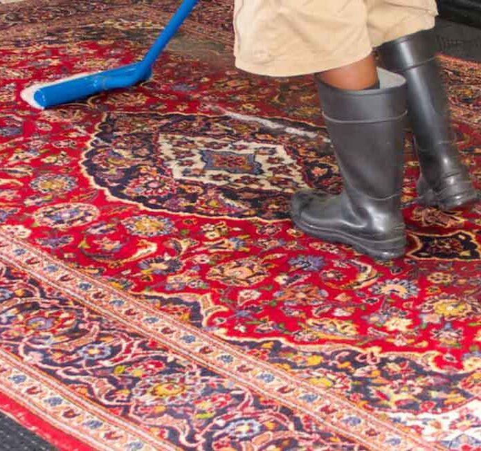 قالیشویی در احتشامیه