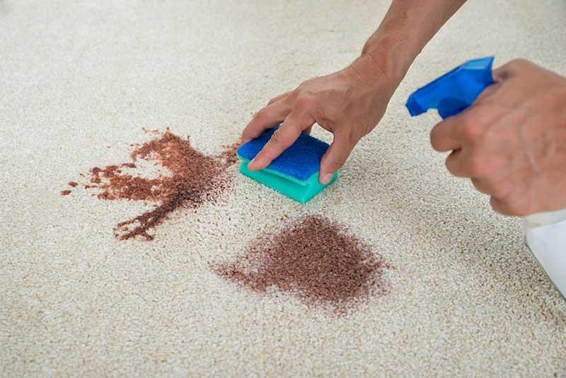 لکه برداری فرش دستبافت در محل